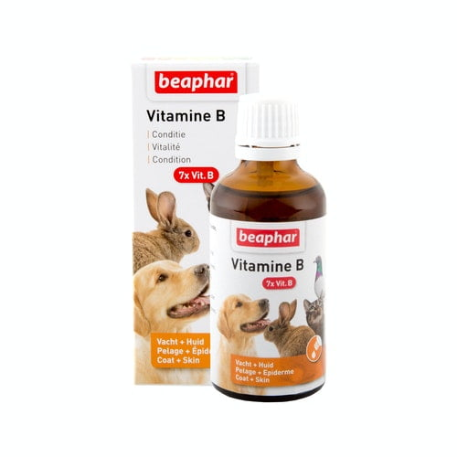 Vitamine B pour animaux